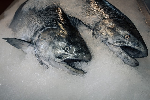 Online Safe Food Training Guide to Fresh Seafood Storage