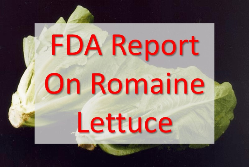 FDA Report On Romaine Lettuce