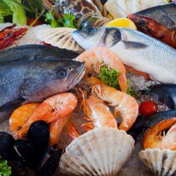Seafood-Salmonella