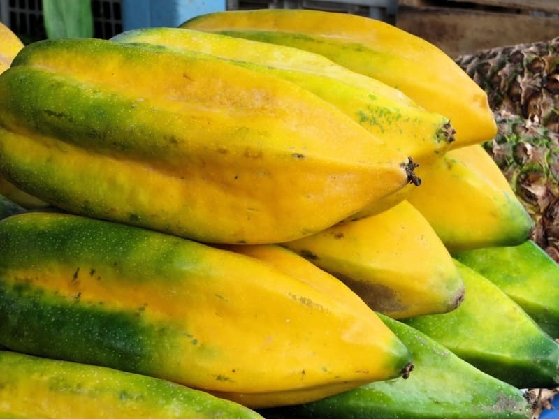 ServSafe and Salmonella on Papayas